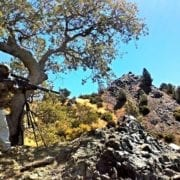 ground squirrel hunting with hatsan at44