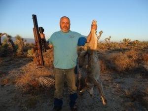 airgun coyote hunt